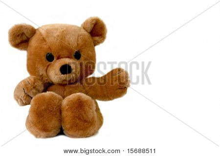 A big, brown teddy bear