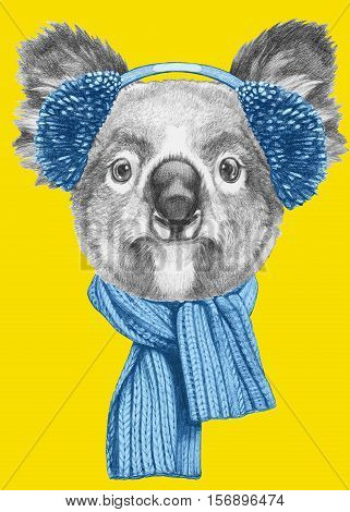 Portrait of Koala with scarf and earmuffs. Hand drawn illustration.