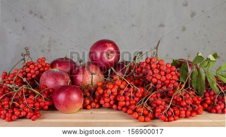 The berries are red ash for use as a decorative still-life.