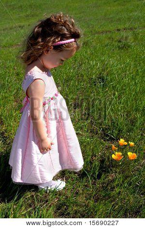 Niña en un prado de hierba mirando amapolas naranjas