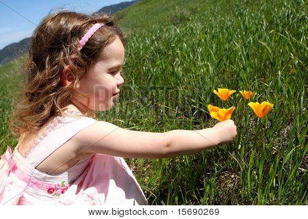 Kleines Mädchen in eine Wiese mit Blick auf orange Mohn