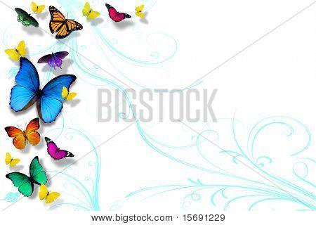 Coloridas mariposas aisladas en blanco, espacio para copia