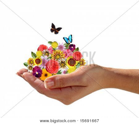 Hand holding a pile of flowers with butterflies