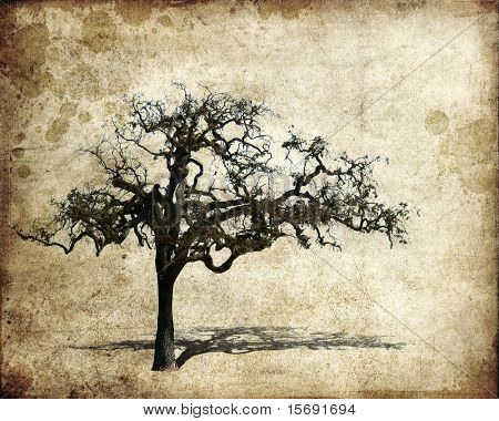Oak tree on a grungy background