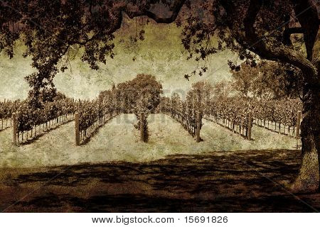 Oak tree and winery on grungy paper
