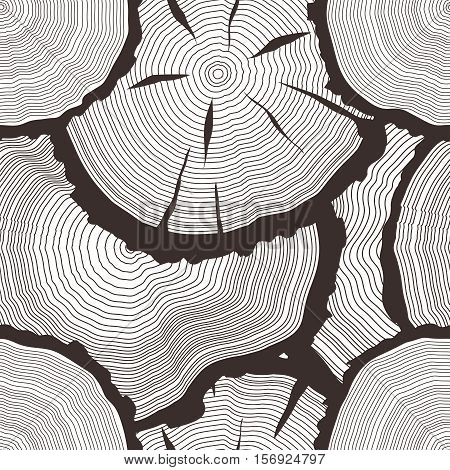 Vector tree rings set, concept of saw cut pine, forest fir-tree trunk, hand drawn slice, freehand sawmill background, wooden texture illustration, seamless pattern