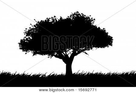 Silueta de vector de un árbol en un prado
