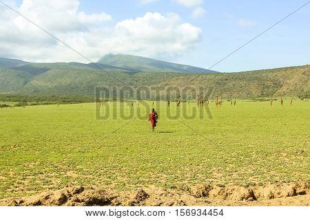 Masai Tribe Tanzania