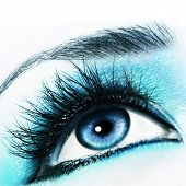 picture of blue eyes  - Blue eye - JPG