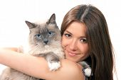 Woman Hold Her Lovely Ragdoll Cat With Blue Eye