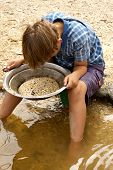 image of gold panning  - a young boy looks into the pan looking for gold - JPG