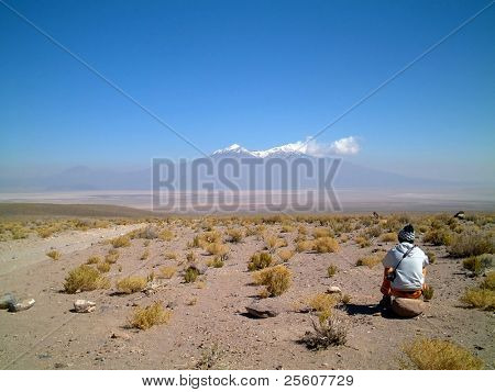 gazing into the distance, altiplano, uyuni, bolivia, south america