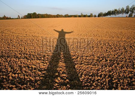 shadow of person cast over field
