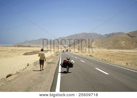 desert road in the red sea region, sinai, egypt