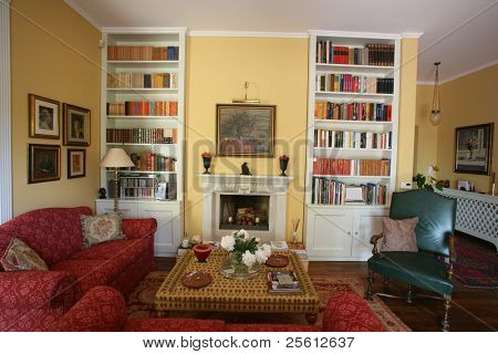 Classic style living room with sofas and bookshelves