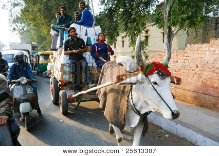 DELHI - JANUARY 19: Men sitting on top of pile of parcels being transported by a cow drawn cart in January 19, 2008 in Delhi, India.