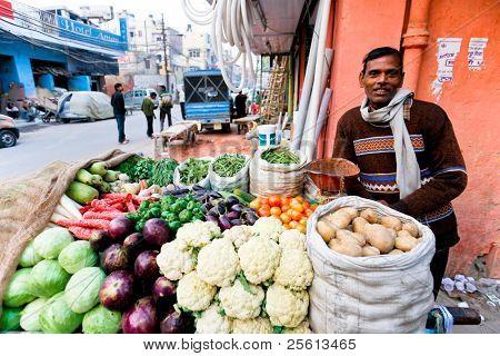 DELHI - 31 de enero: Vegetal mezquita con su stand móvil en 31 de enero de 2008 en Delhi, India. M