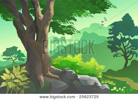 OLD TREE, FLORA AND FAUNA BY HILLSIDE