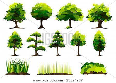 Abbildung Reihe von Baum auf weißem hintergrund isoliert
