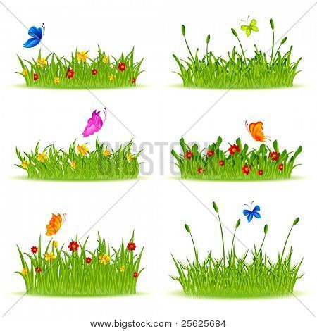 illustration of set of different shape grass with flowers and butterfly