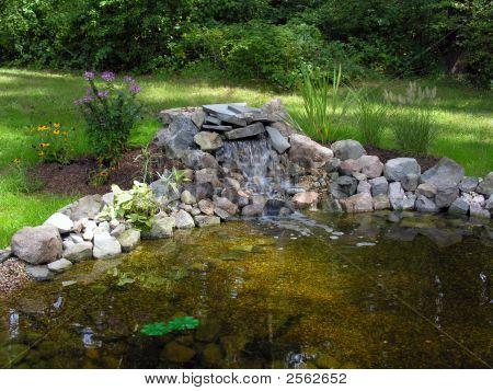 Backyard Fish Pond Stock Photo Stock Images Bigstock