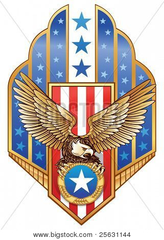 American Eagle Insignia