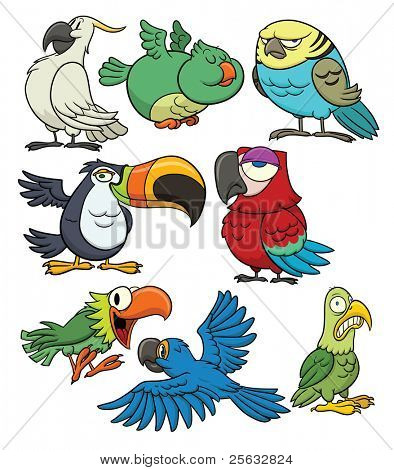8 cartoon tropical birds. All in separate layers for easy editing.