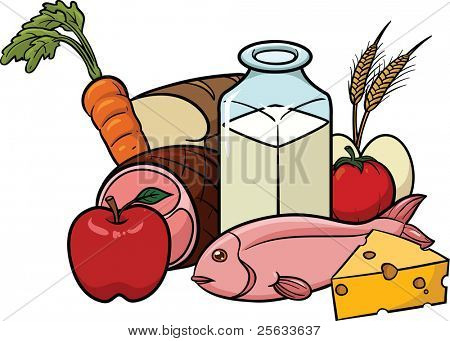 Vector illustration of balanced food. All in a single layer.