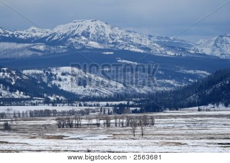 Mountain Wilderness In Winter