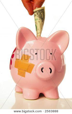 Piggy Dollar 2