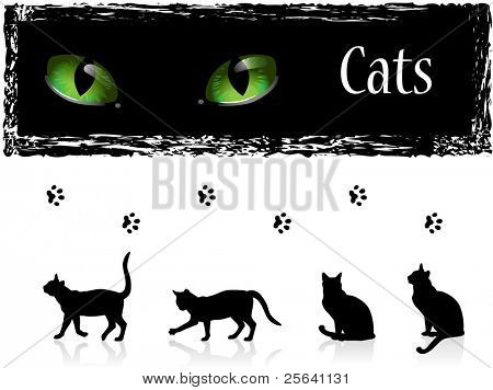 Black cats, eyes and footprints