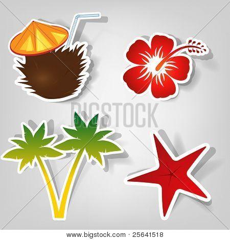 set of design elements to advertise a beach party