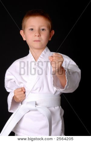 Karate Kid - Focus On Fist