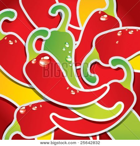 Background from colorful chili peppers with the drops of water. Vector illustration.