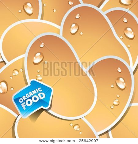 Background from potatoes with an arrow by organic food. Vector illustration.