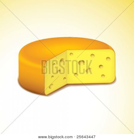Swiss cheese. Vector illustration. Eps8
