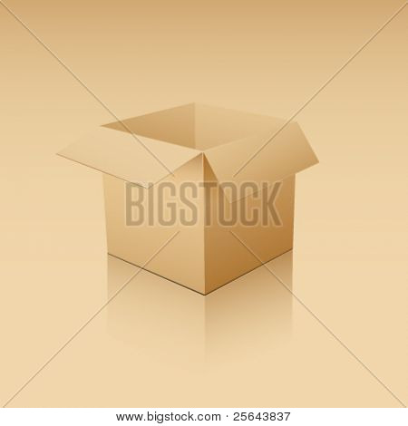 Cube-shaped Software Package Box. Vector illustration.