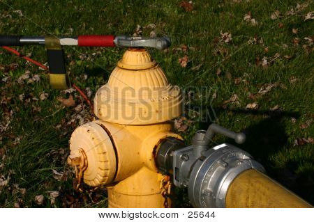 Fire Hydrant And Hose