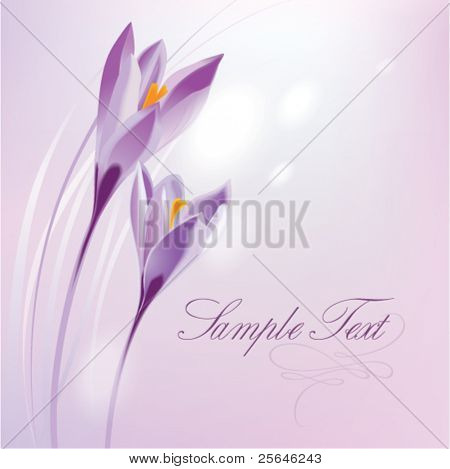floral pattern background for invitations