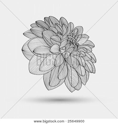 abstract floral Background. Vektor Blume Dahlie. Element für Design.
