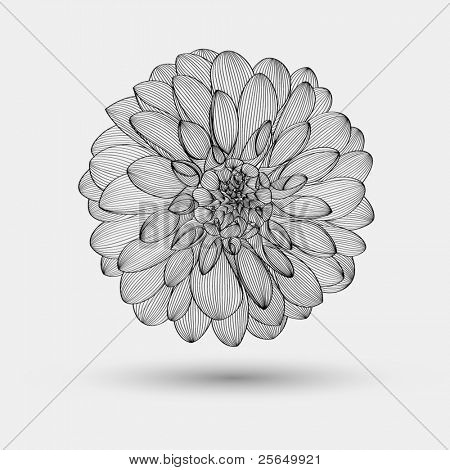 Abstract floral background. Vector flower dahlia. Element for design.