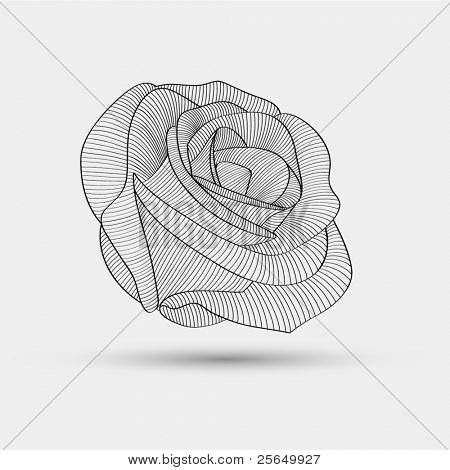 Abstract floral background. Vector flower rose.  Floral element for design.