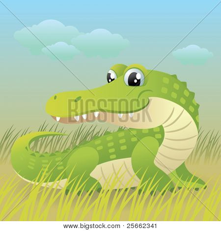 Baby Animal collection: Crocodile