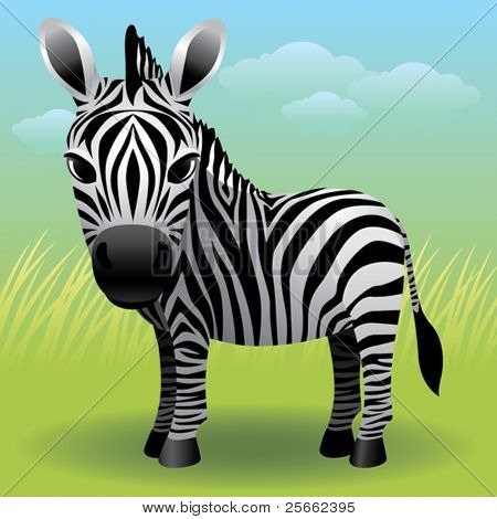 Baby Animal collection: Zebra  More baby animals in my gallery.