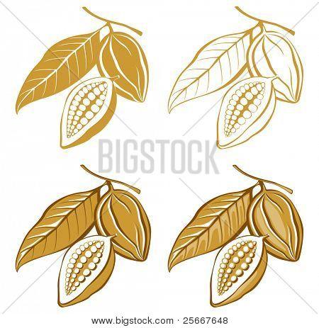 ícones estilizados feijões de cacau