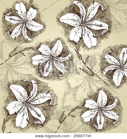 background with hand drawn lilly flowers