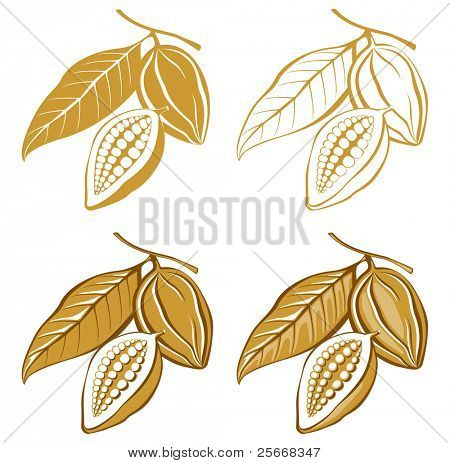 cacao beans icons