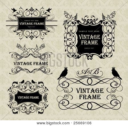 vintage frames with birds