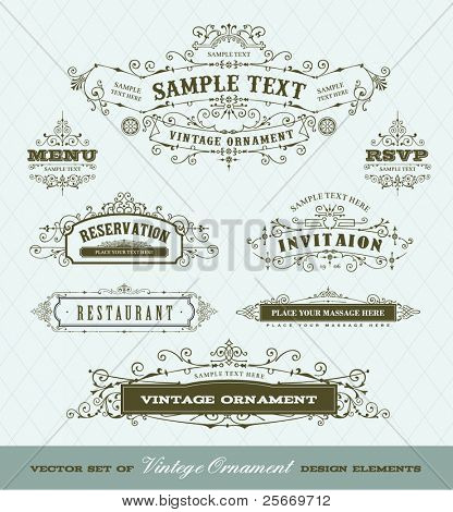 vector set of vintage ornaments