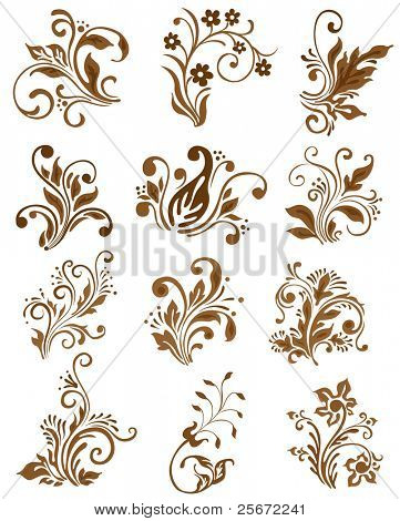 Floral elements design. Vector ornament